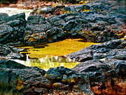 Halona Framed Prints - Black Rocks of Hilo - No.158 Framed Print by Joe Finney