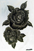 Featured Drawings - Black Roses on white by Roberto Gagliardi