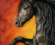 Black Stallion Paintings - Black Satin by Sheri Gordon