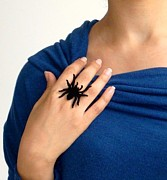 Charm Ring Jewelry - Black Spider Ring by Rony Bank