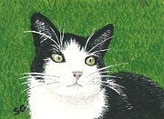 Sherry Goeben - Black Tuxedo Cat in...