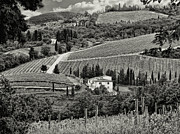 Artistic Legacy Posters - Black White Tuscan Countryside Poster by Jennie Breeze