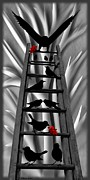 Saint Jean Art Gallery Prints - Blackbird Ladder Print by Barbara St Jean