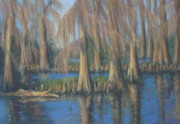 Swamp Pastels Posters - Blackwater Blue at Magnolia Gardens Poster by Pamela Poole