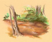 Foliage Pastels Prints - Blackwater Creek Print by MM Anderson