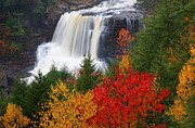 Falls Photos - Blackwater falls in autumn by Jetson Nguyen