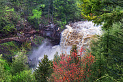 Mary Almond - Blackwater Falls State Park Overlook