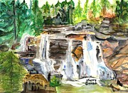 The Trees Mixed Media - Blackwater Falls West Virginia by Sherry Gamble