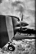 Paul Job Metal Prints - Blade Flyer Metal Print by Paul Job