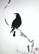 Blackbird Drawings Metal Prints - Blakbird Metal Print by Dafni