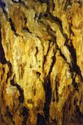 Blanchard Springs Caverns-arkansas Series 04 Print by David Allen Pierson