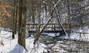 Trees Reflecting In Water Metal Prints - Blanket Of Snow Metal Print by Brenda Donko