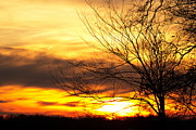 Amanda Kiplinger - Blazing Sunset