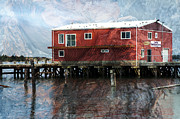 Ron Hoggard - Blended Oregon Dock and...
