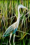 Stork Digital Art Posters - Blending with the Grass Poster by Stephen Younts