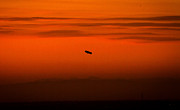 Beach Sunsets Originals - Blimp at Dusk by Denise Dube