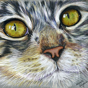 Color Pencil Drawings - Blink Cat Square Art by Michelle Wrighton
