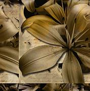Bliss II Print by Yanni Theodorou