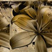 Bliss IIi Print by Yanni Theodorou