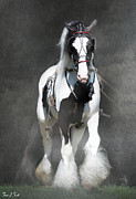 Horses In Harness Prints - Blitz Print by Fran J Scott