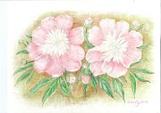 Eve-Ly Villberg - Blond peonies