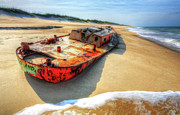 Pea Island Prints - Blood and Guts II - Outer Banks Print by Dan Carmichael