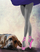 Dog Framed Prints Digital Art Framed Prints - Blood Hound and ballet Dancer Framed Print by Kelly McLaughlan