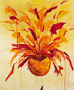 Santa Cruz Art Originals - Blood Orange Ginger by Phoenix The Moody Artist