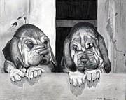 Puppies Drawings Framed Prints - Bloodhound Puppies Dog Portrait  Framed Print by Olde Time  Mercantile