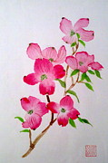 Margaret Welsh Willowsilk - Blooming Dogwood