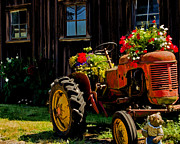 Old Country Roads Posters - Blooming Tractor Art Poster by Jordan Blackstone