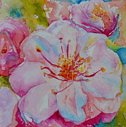 Tree Blossoms Paintings - Blossom by Beverley Harper Tinsley