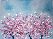 Nancy Van den Boom - Blossom
