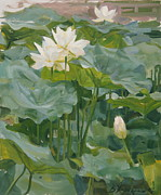 Featured Art - Blossoming lotuses by Victoria Kharchenko