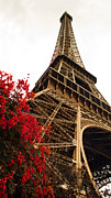 Vintage Eiffel Tower Posters - Blossoming Paris Eiffel Tower Poster by Phill Petrovic