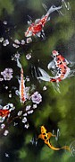 Koi Painting Posters - Blossoms and Koi Poster by Carol Avants