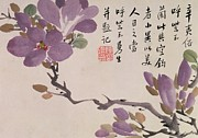 Purple Flowers Drawings - Blossoms by Chen Hongshou