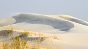 Allen Sheffield - Blowing Desert Sands