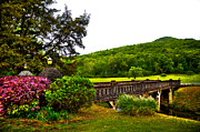 Bridge Of Flowers Prints - Blowing Spring Park Print by David Patterson