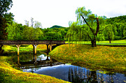 Bridge Of Flowers Prints - Blowing Spring Park - Tennessee Print by David Patterson