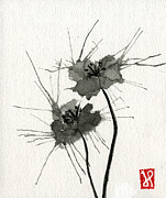 Jamie Seul Metal Prints - Blown Poppies Metal Print by Jamie Seul
