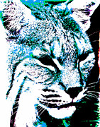 Bobcat Art Prints - Blue Abstract Bobcat  Print by Mark Moore