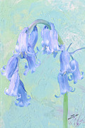 Flowers - Blue Bells by Iain S Byrne