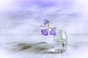Harmonious Metal Prints - Blue bells Metal Print by Veikko Suikkanen