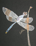 Dragonfly Drawings Framed Prints - Blue Boy Framed Print by Marcia Weller-Wenbert