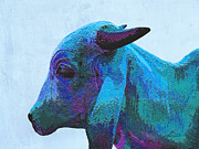 Cow Digital Art - Blue Brahma by Ann Powell