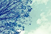 Trees - Blue Branches by Cathie Tyler