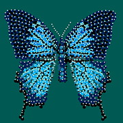 R  Allen Swezey - Blue Butterfly Green...