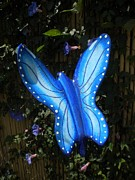 Insect Sculpture Originals - Blue Butterfly by Johnny O