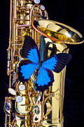 Blue Butterflies Posters - Blue butterfly on sax Poster by Garry Gay